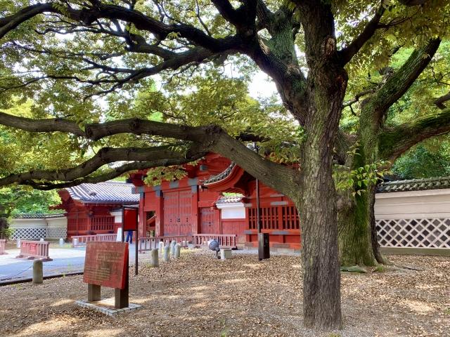 東京大学 関連画像